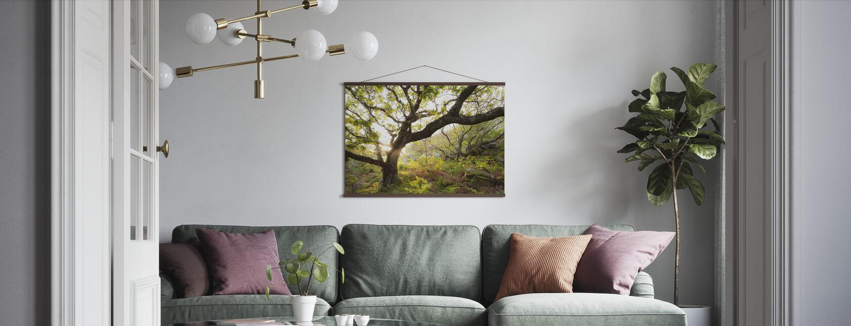 Backlit Scottish Oak Wood - Poster - Living Room