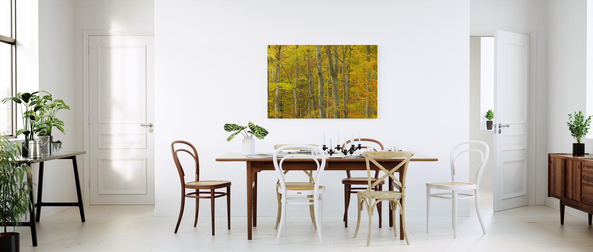 Common Beech Woodland - Canvas print - Kitchen
