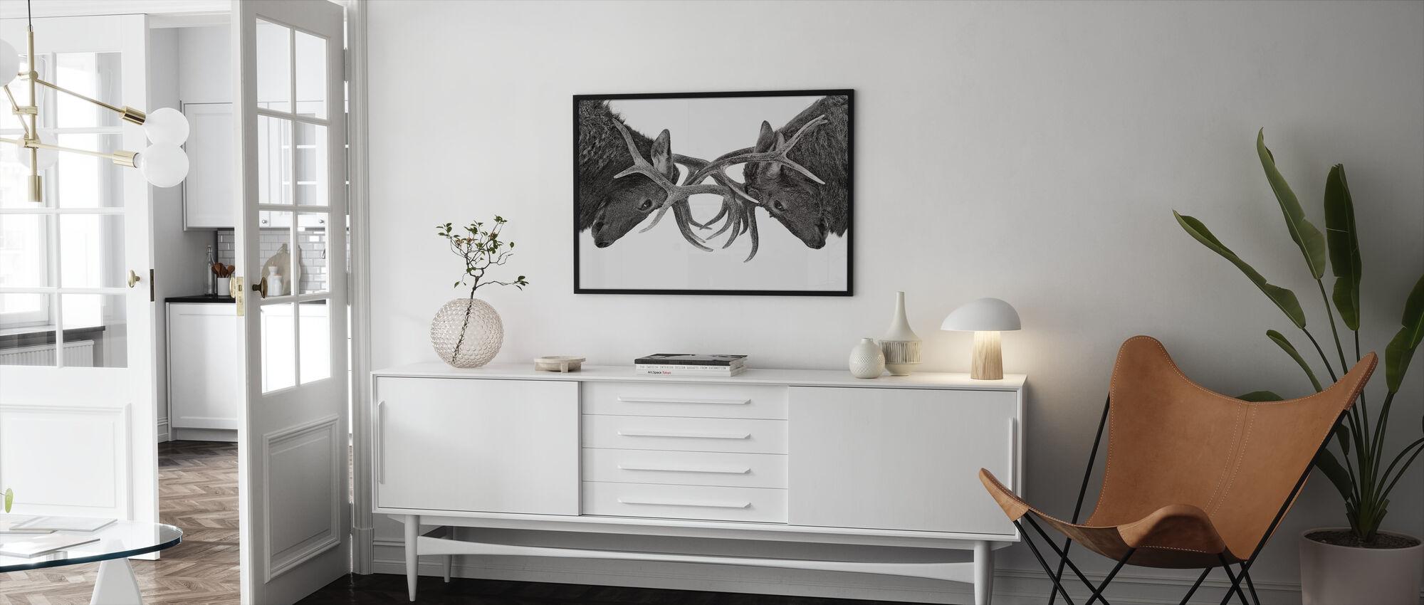 Eye to Eye - Elk fight, black and white - Framed print - Living Room