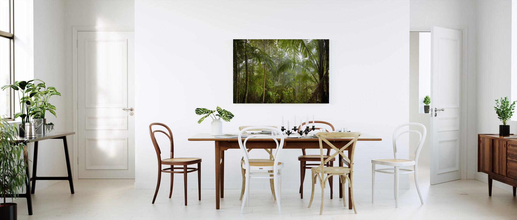 Borneo Tropical Rainforest - Canvas print - Kitchen