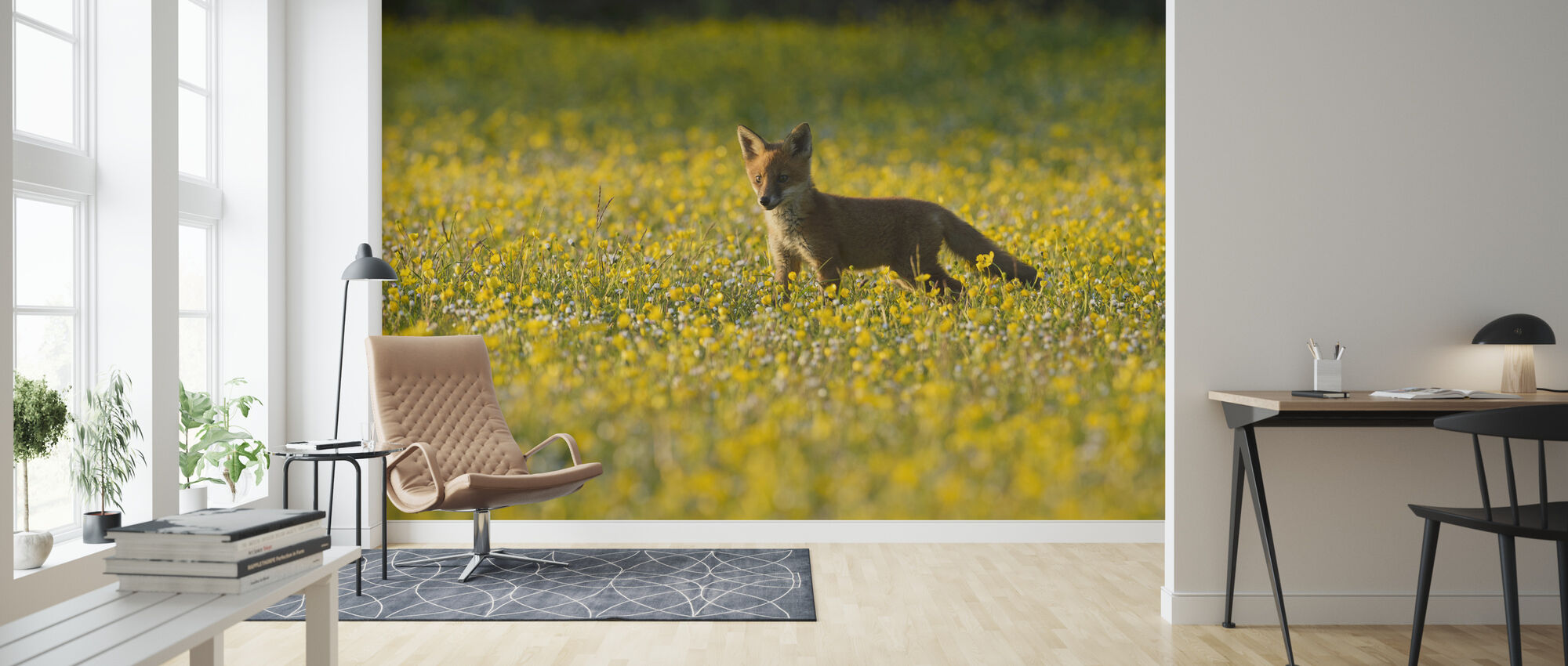 Red fox cub - Tapet - Stue