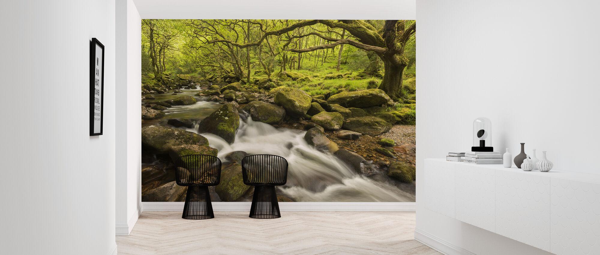 River Plym in Dewerstone Wood, Devon, England, UK - Wallpaper - Hallway