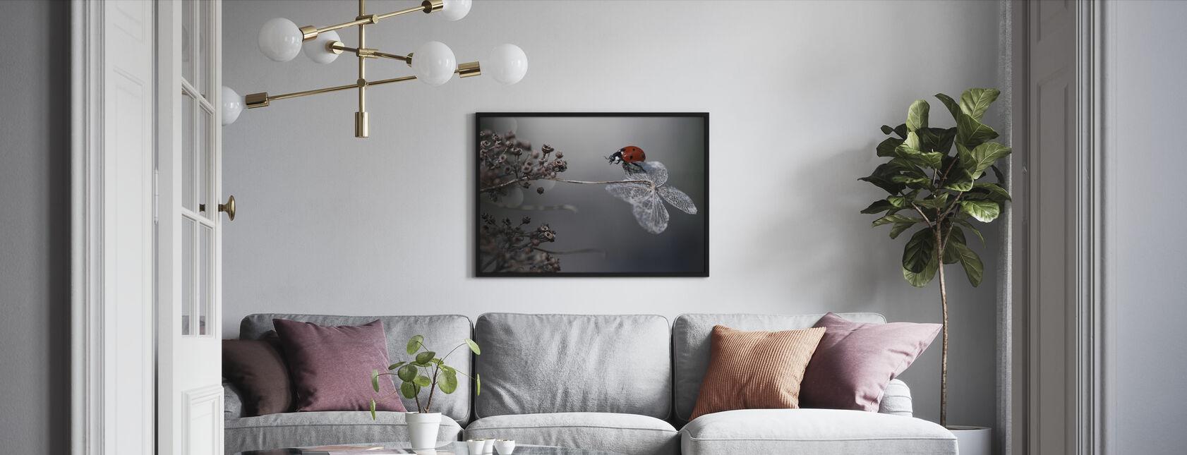 Ladybird på hortensia - Innrammet bilde - Stue
