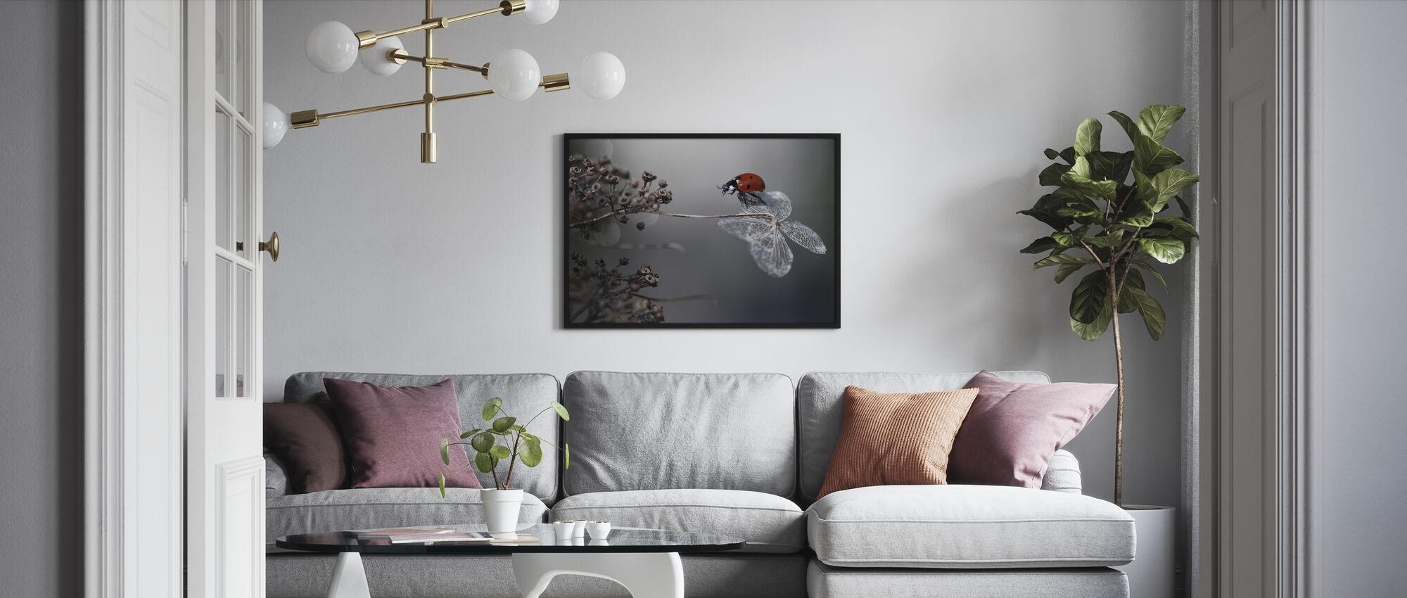 Ladybird på Hydrangea - Indrammet billede - Stue