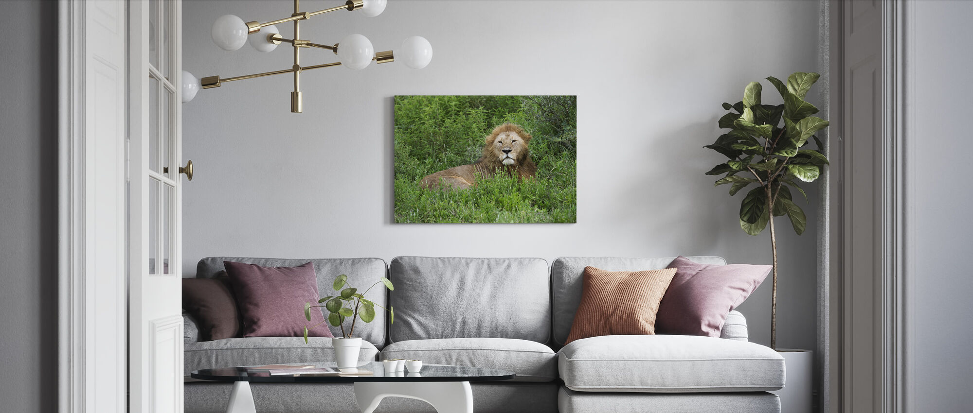Lion Hiding in Green - Canvas print - Living Room