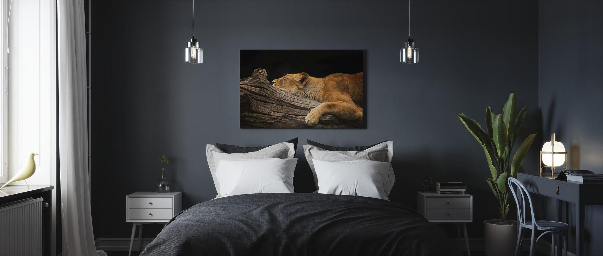 Lew na dzienniku - Obraz na płótnie - Sypialnia