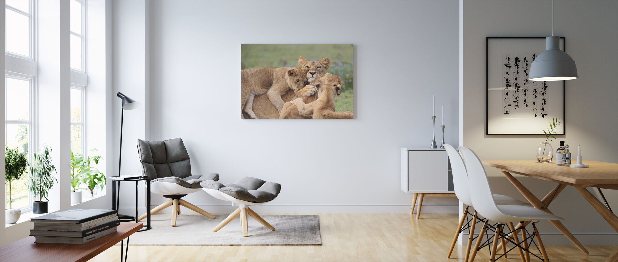 Playing Cubs - Canvas print - Living Room