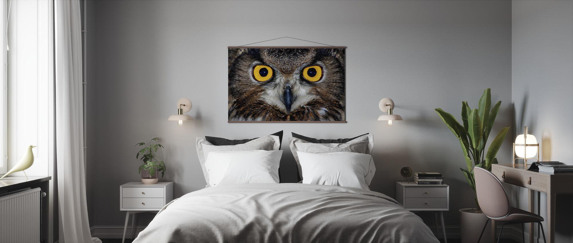 Eagle Ugle Øyne - Plakat - Soverom