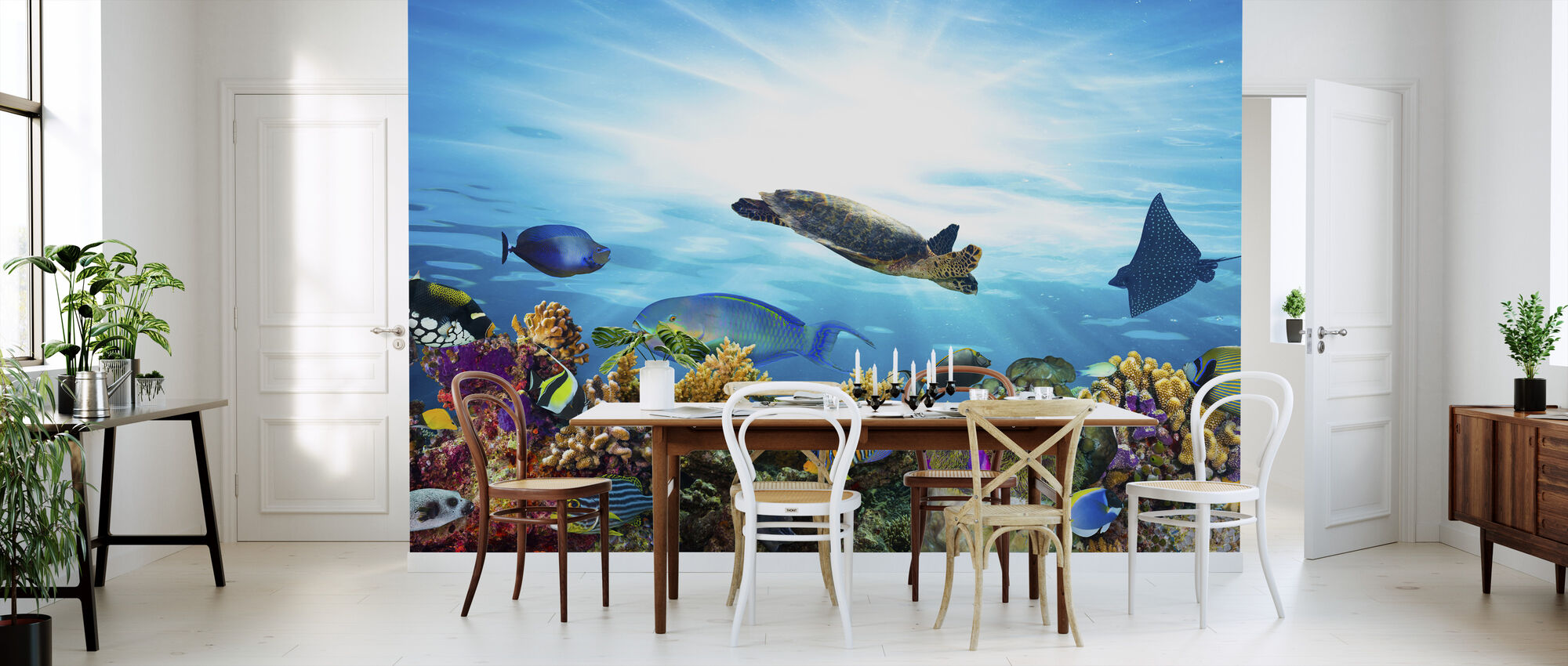 coral reef panorama fototapete nach ma photowall. Black Bedroom Furniture Sets. Home Design Ideas