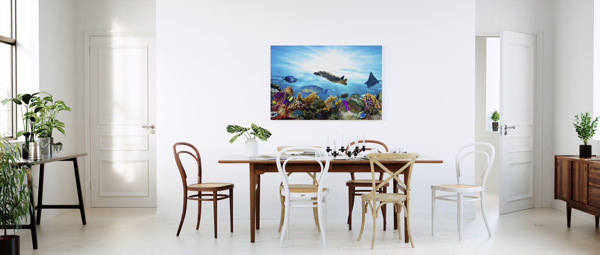 Coral Reef Panorama - Canvas print - Kitchen