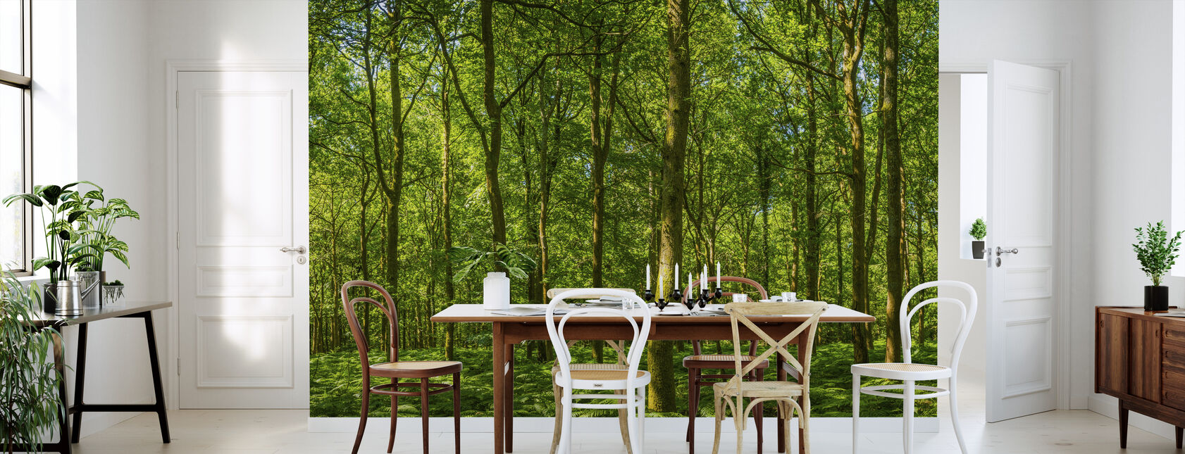 Emerald Green Panorama Forest - Wallpaper - Kitchen