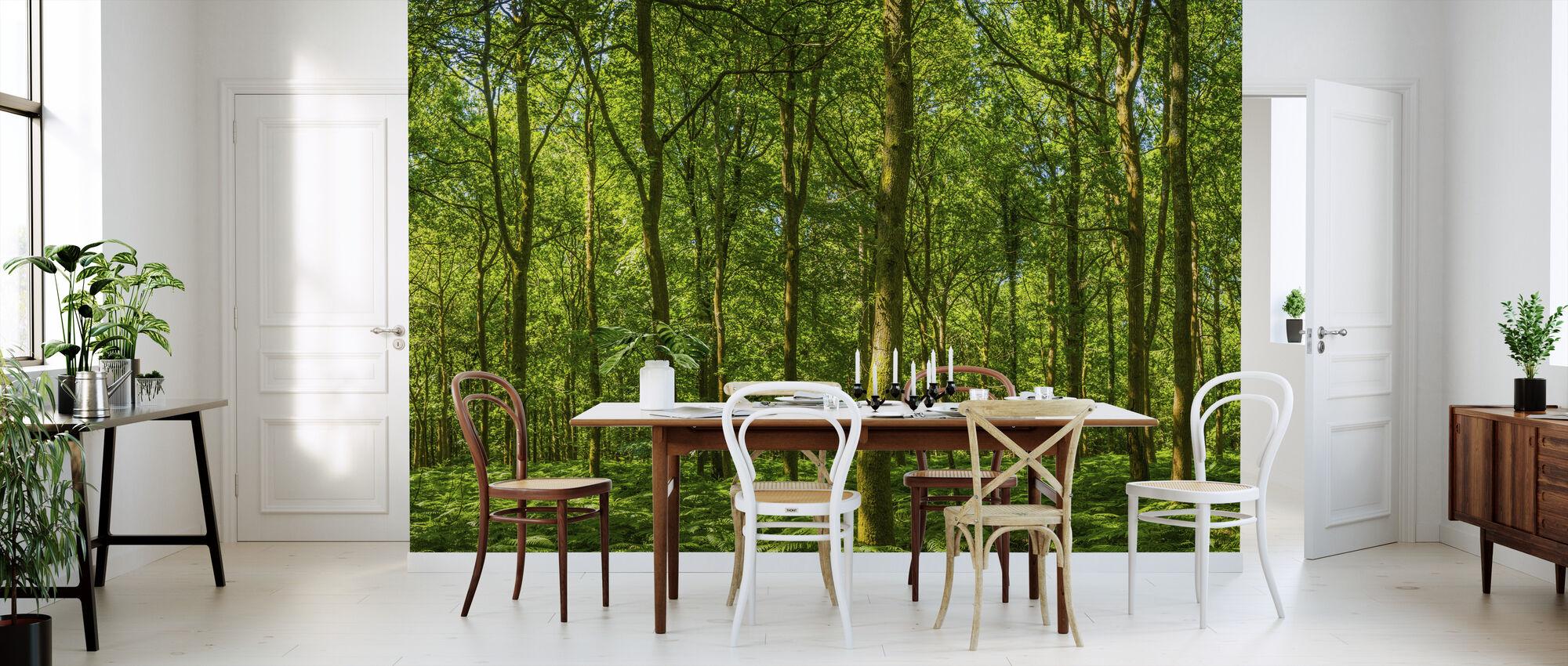 Emerald Green Panorama Forest - Wallpaper - Kitchen