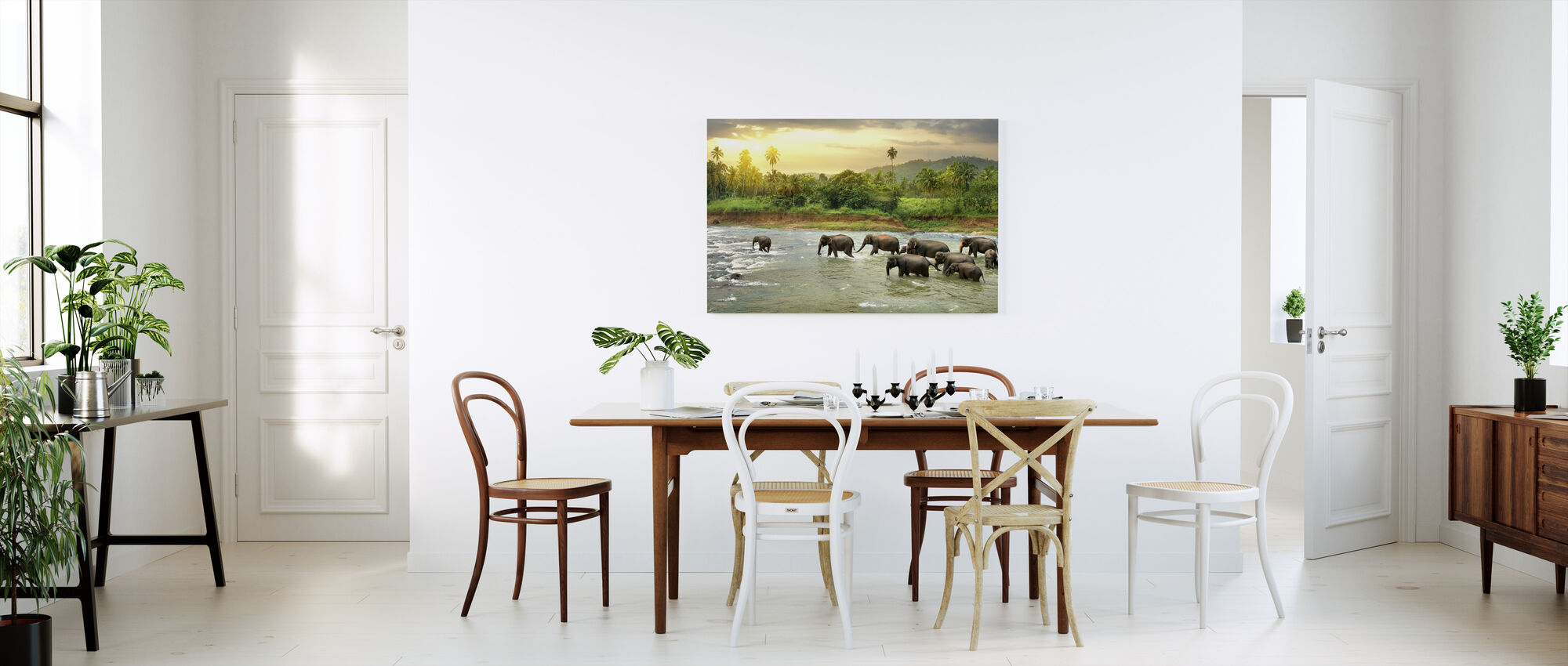 Wading Olifant kudde - Canvas print - Keuken