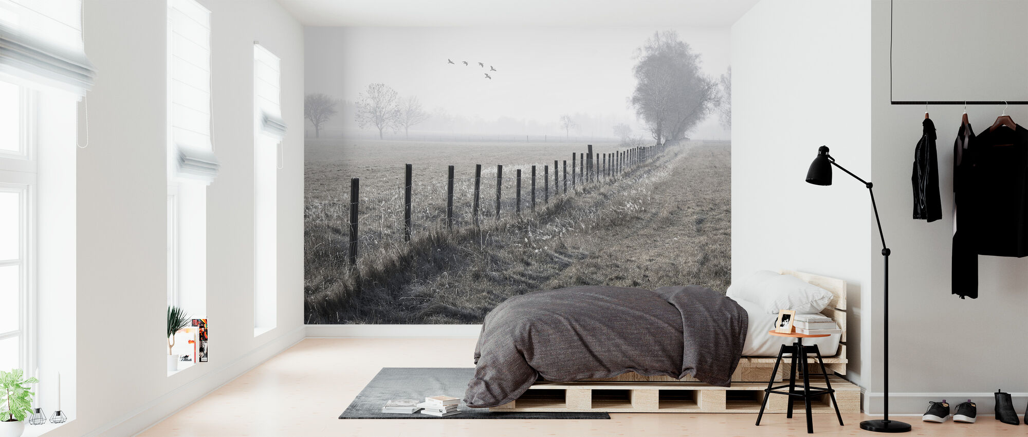 Foggy Morning - Wallpaper - Bedroom