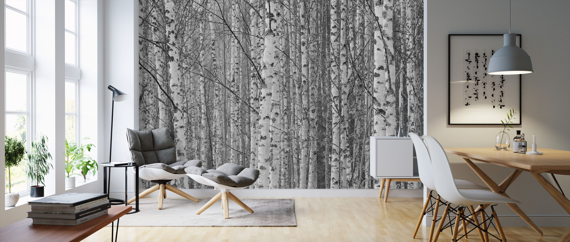 Gotland Birch Forest - Wallpaper - Living Room