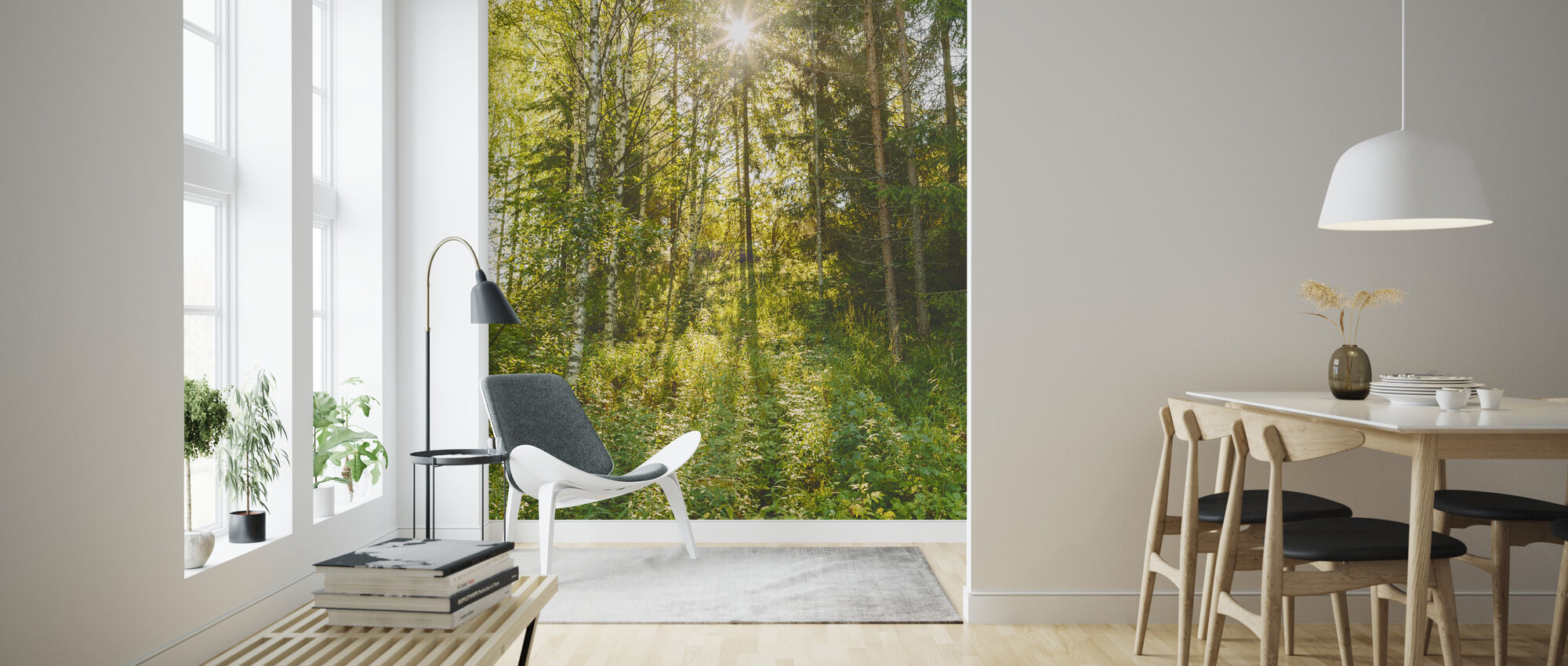 Sunlit Deciduous Trees, Finland - Wallpaper - Living Room