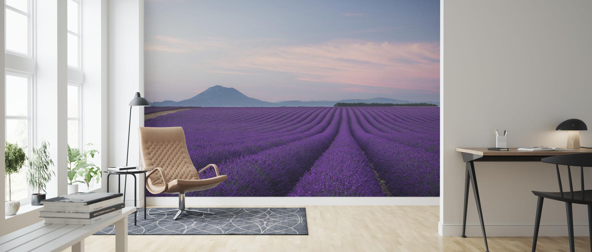 Lavender field - Wallpaper - Living Room