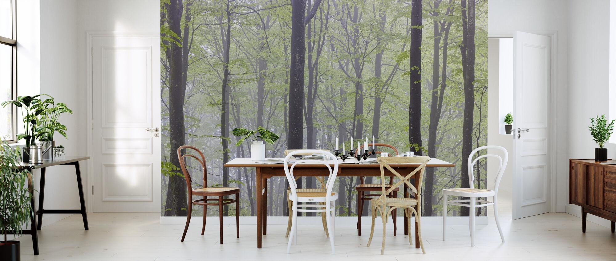 Misty Beech Forest - Wallpaper - Kitchen