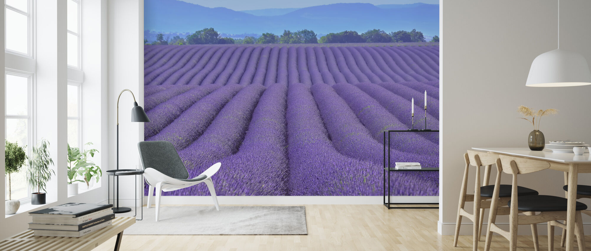 Gorgeous Lavender - Wallpaper - Living Room
