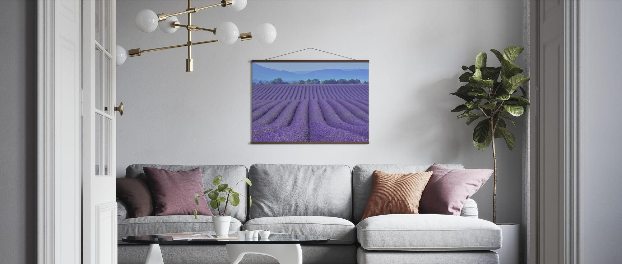 Gorgeous Lavender - Poster - Living Room