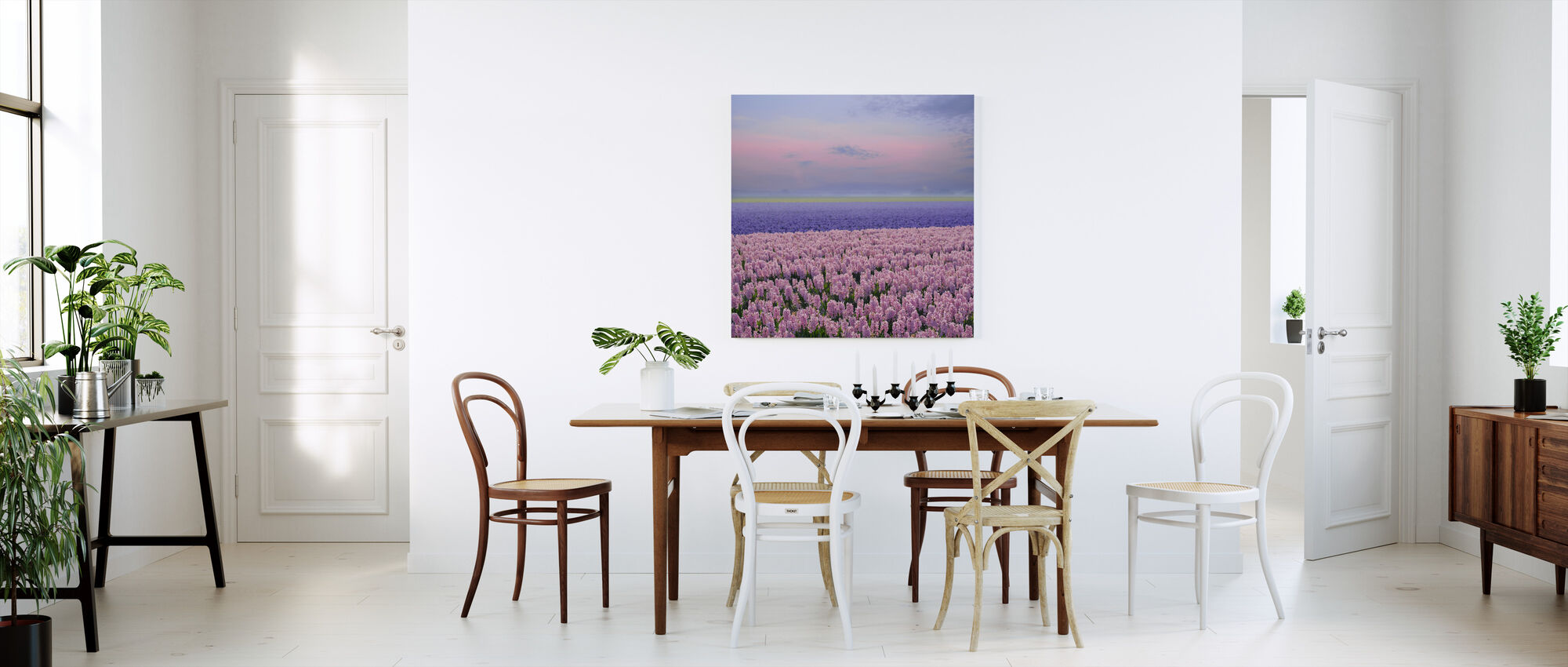 Pink Hyacinth - Canvas print - Kitchen