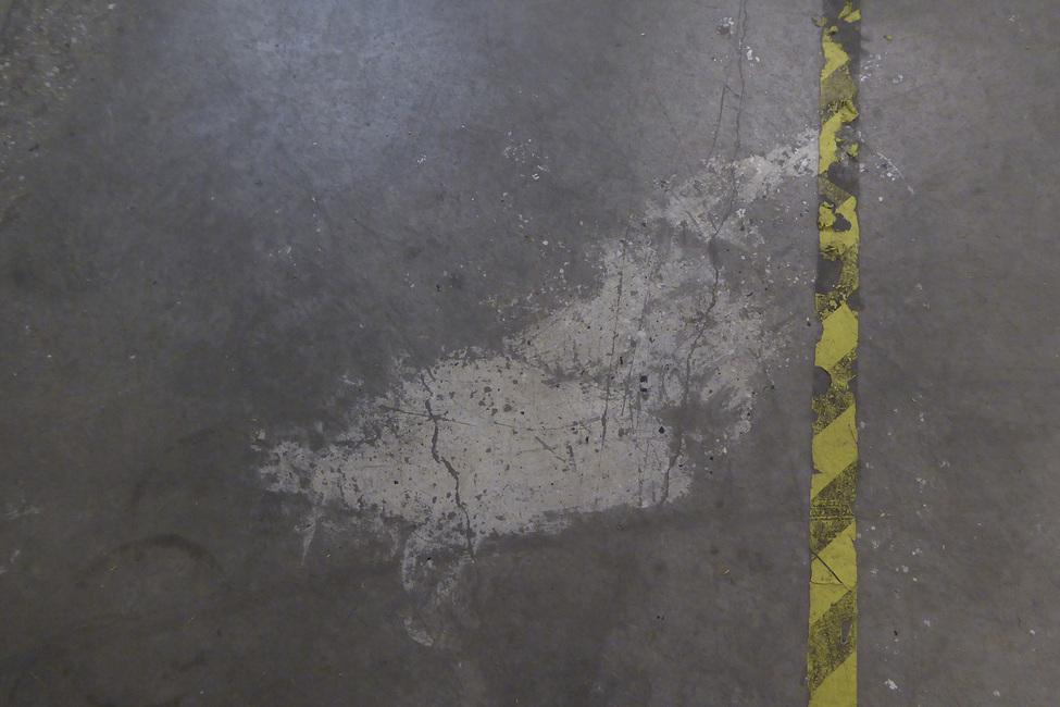 Concrete Floor on Wall 5 Fototapeter & Tapeter 100 x 100 cm