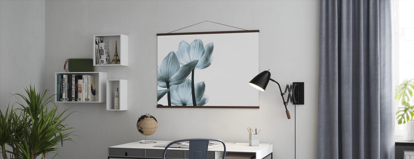 Gjennomsiktige tulipaner - Plakat - Kontor