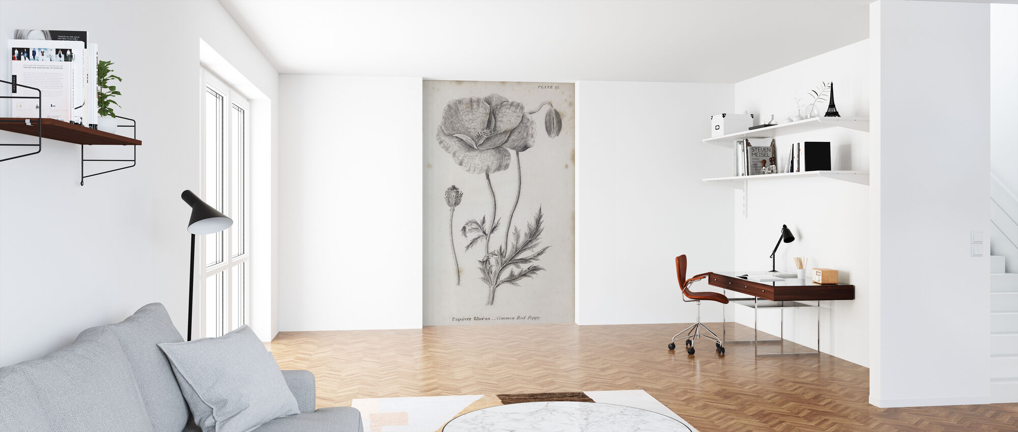 Botanical Chart - Common Red Poppy - Wallpaper - Office