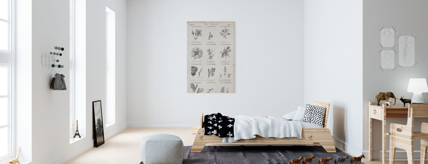 Botanical Chart - Canvas print - Kids Room