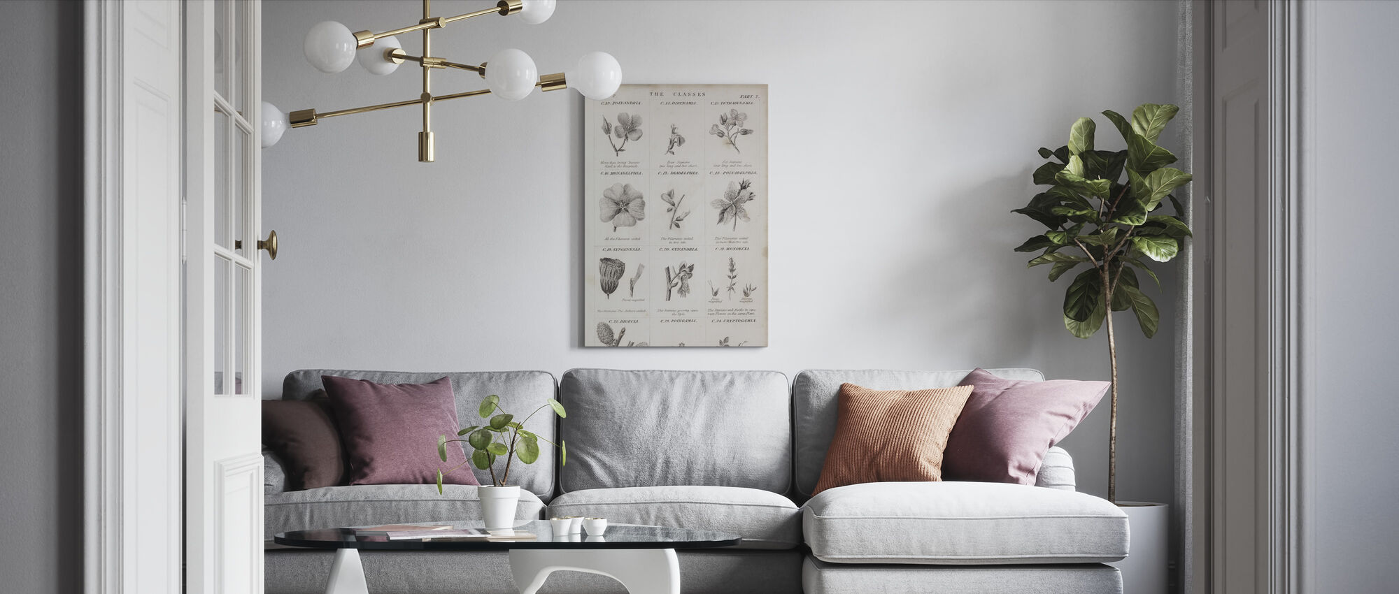 Botanical Chart - Canvas print - Living Room