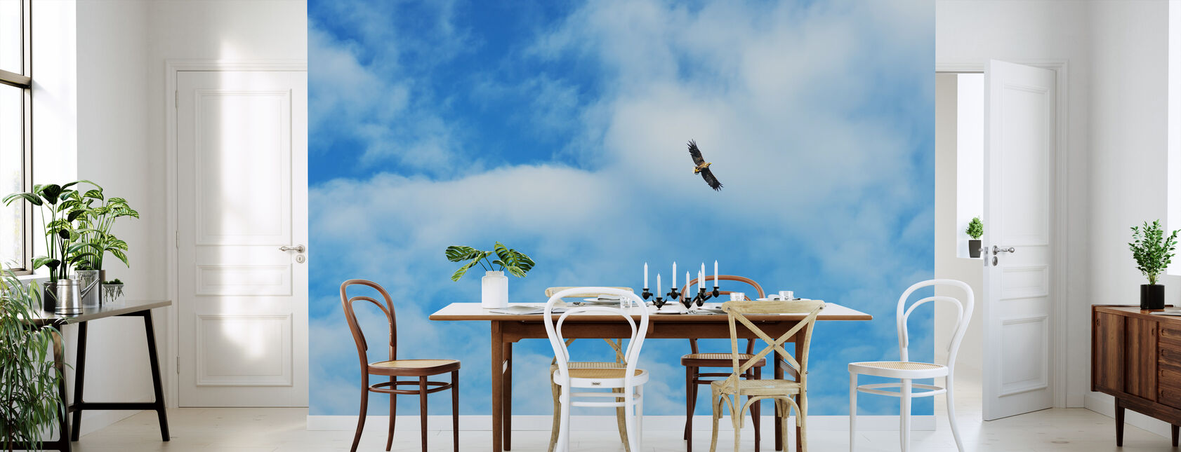 Flying høy - Tapet - Kjøkken