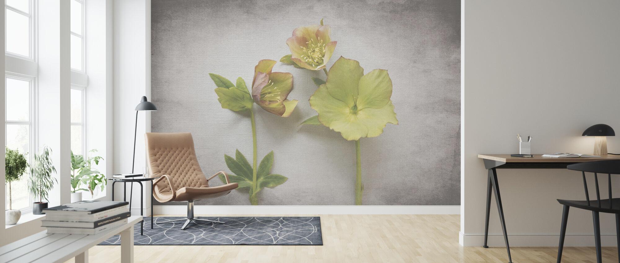 Vintage Hellebore Study IV - Wallpaper - Living Room