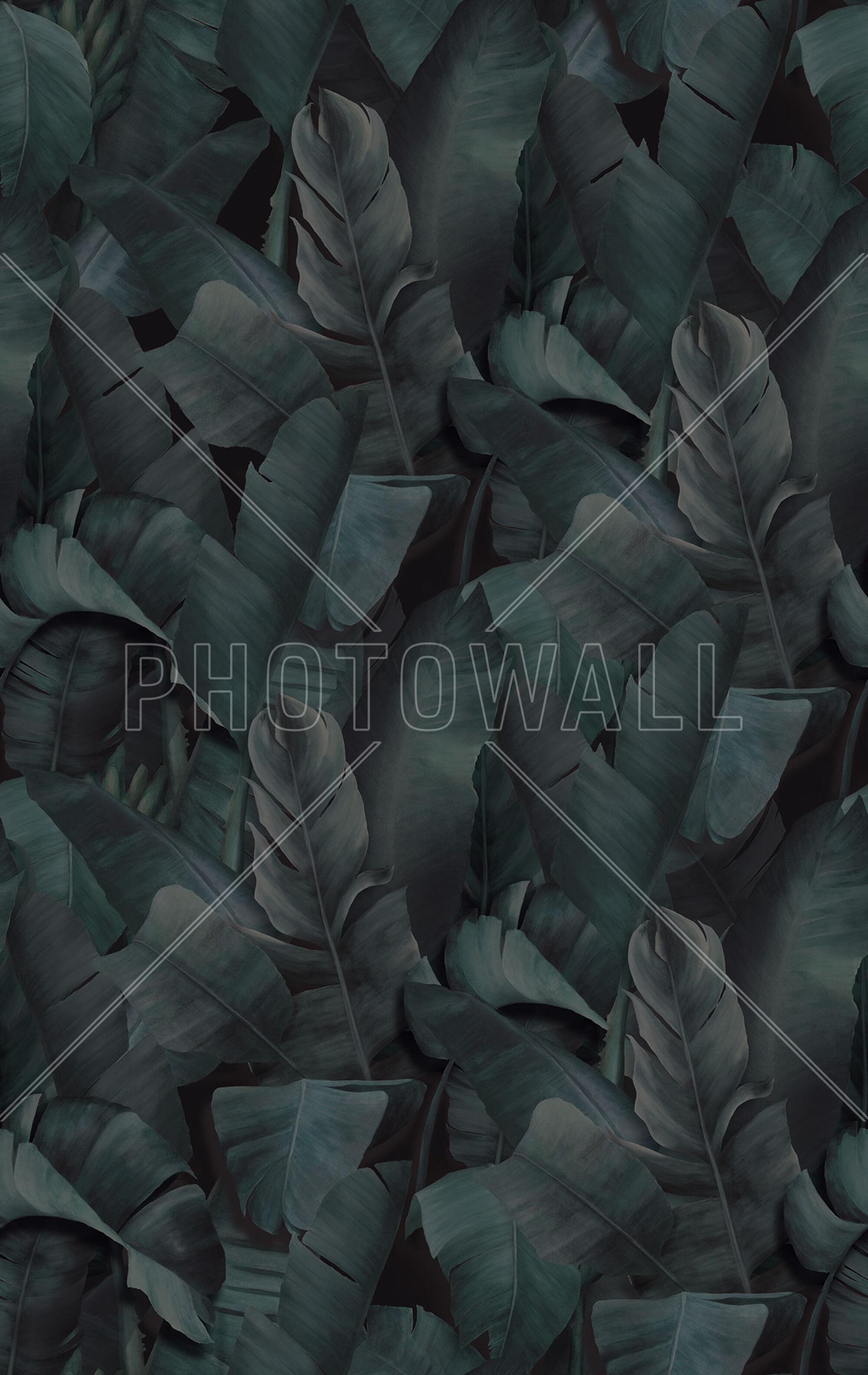 Botany Tropical Emerald Green Trendy Wallpaper Photowall