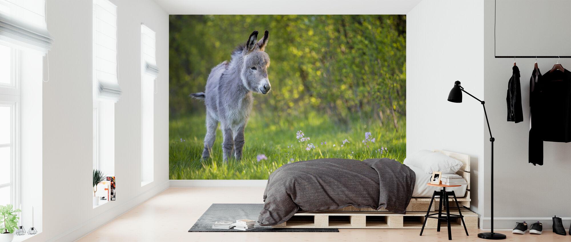 Ezelveulen staand in een weide - Behang - Slaapkamer