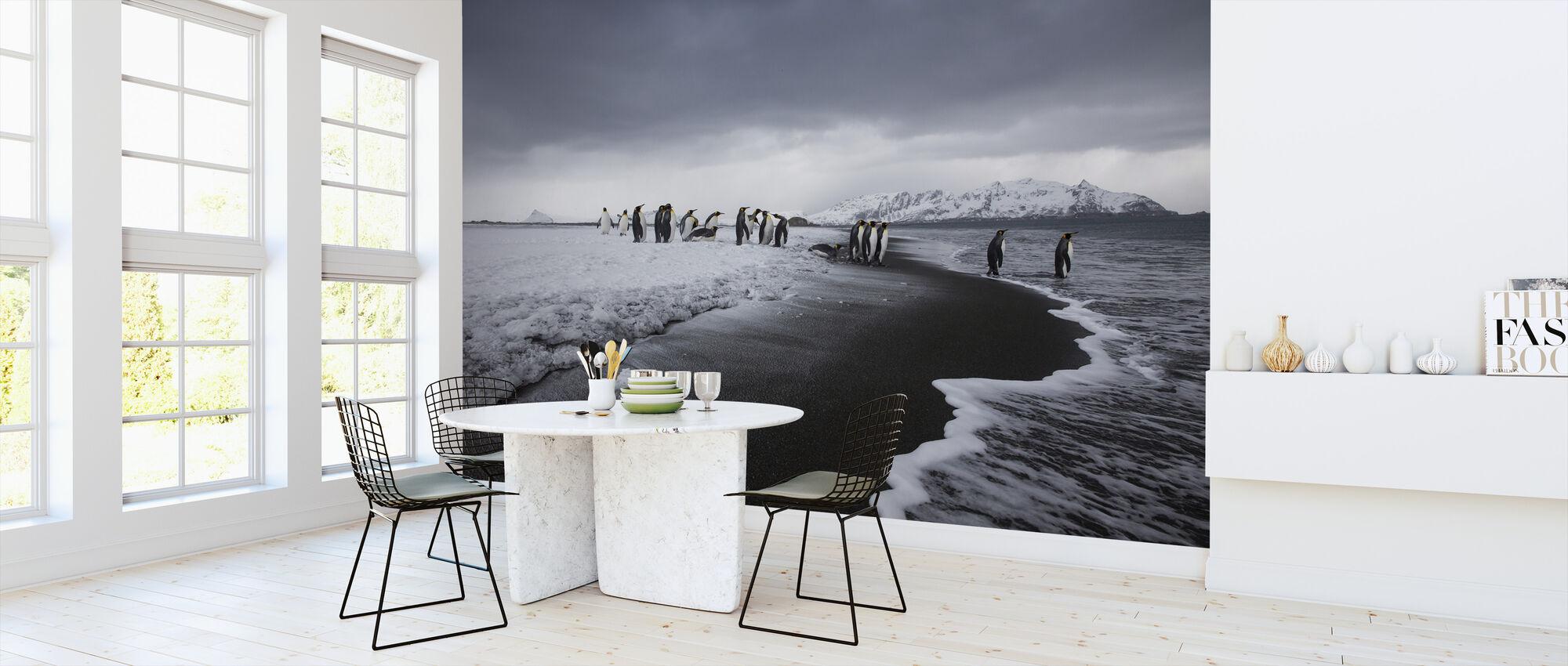 Groep van Koning Pinguïns, Antarctica - Behang - Keuken