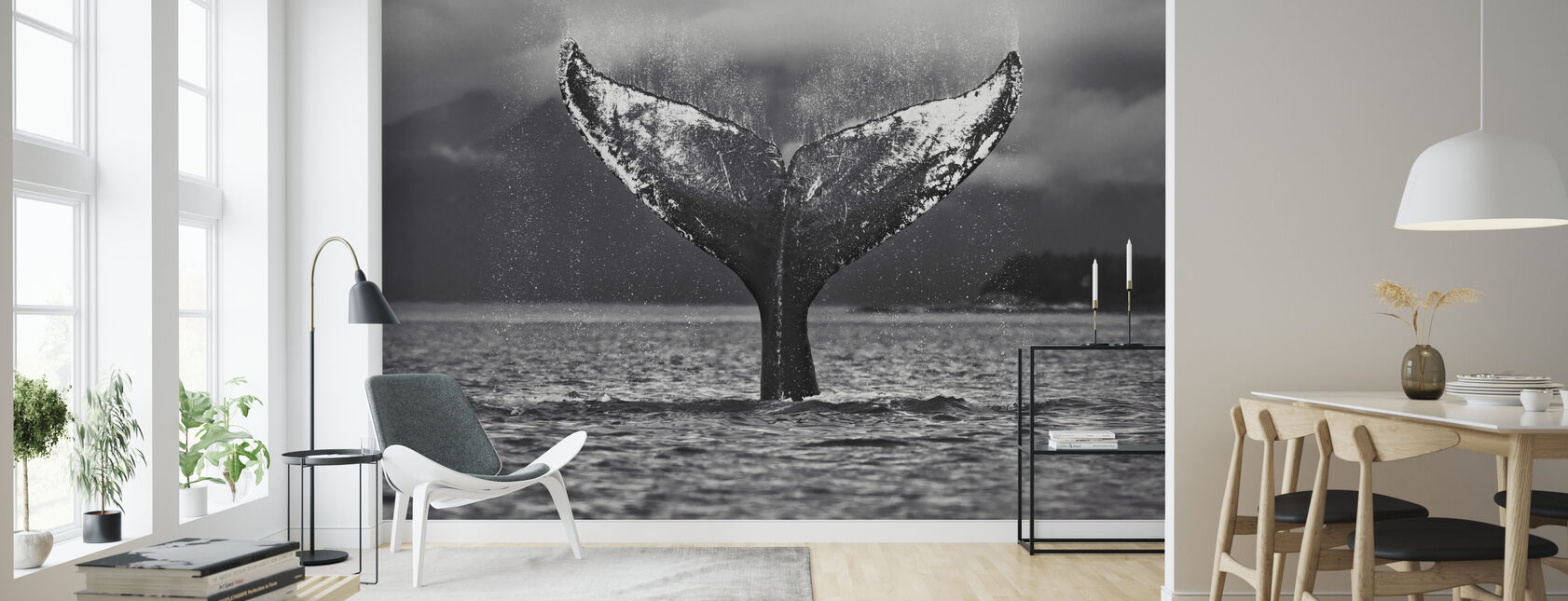 Humpback Whale, Alaska - Wallpaper - Living Room