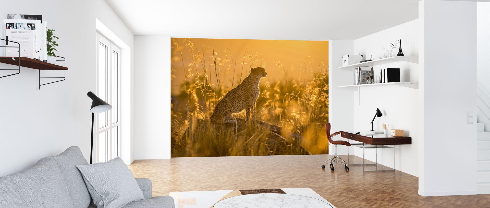 Zuid-Afrikaanse Jachtluipaard bij zonsondergang - Behang - Kantoor
