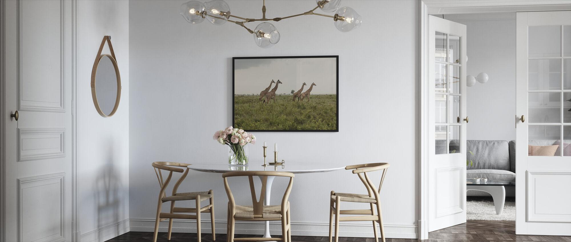 Sjiraffer i nasjonalpark - Innrammet bilde - Kjøkken
