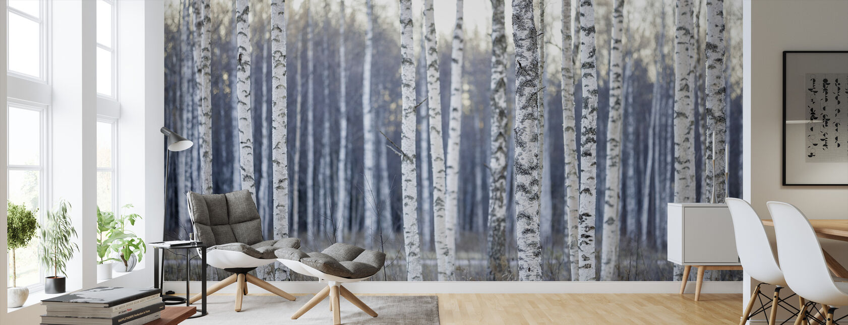 Birch Tree - Wallpaper - Living Room