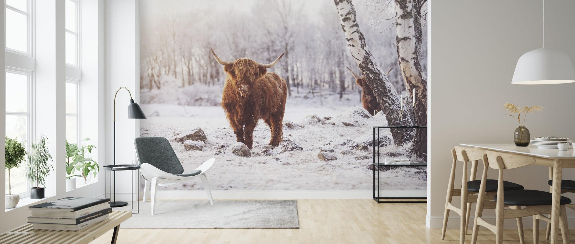 Highland Cattle - Wallpaper - Living Room