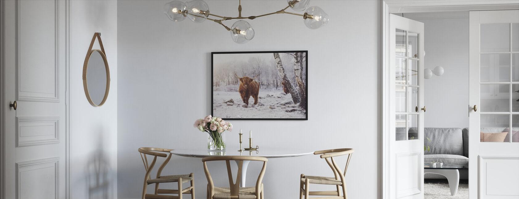 Highland Cattle - Framed print - Kitchen