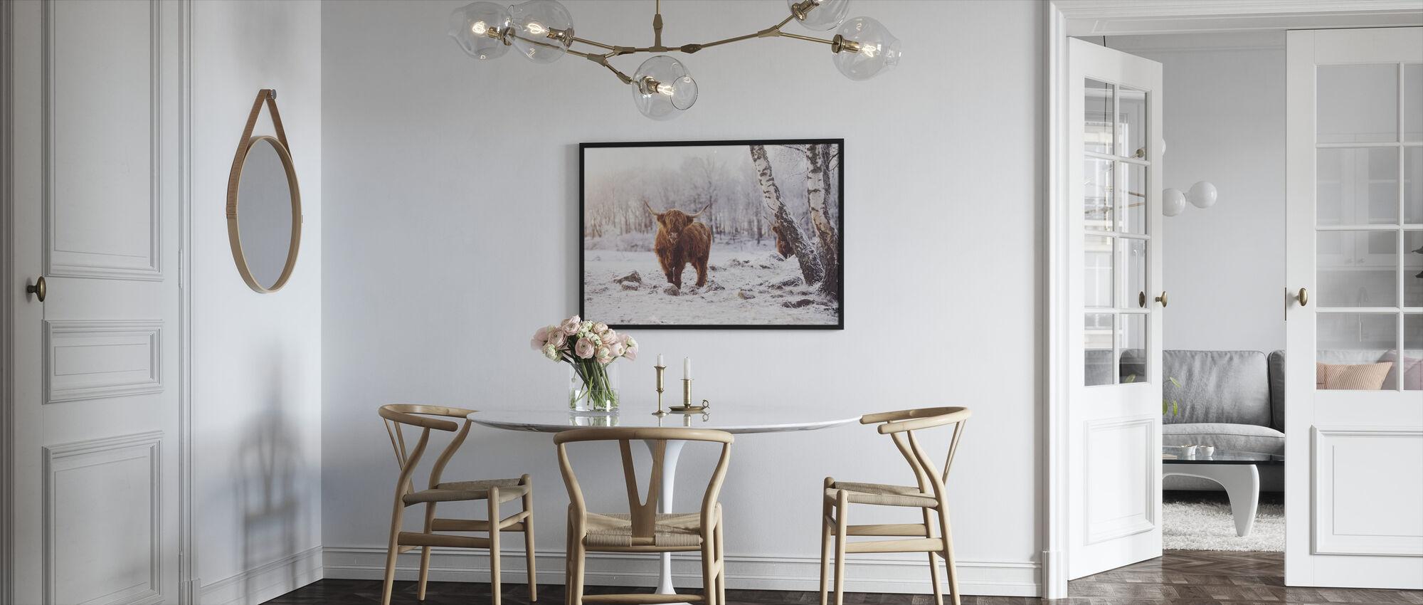 Highland Storfe - Innrammet bilde - Kjøkken