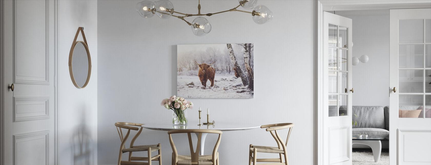 Highland Kvæg - Billede på lærred - Køkken