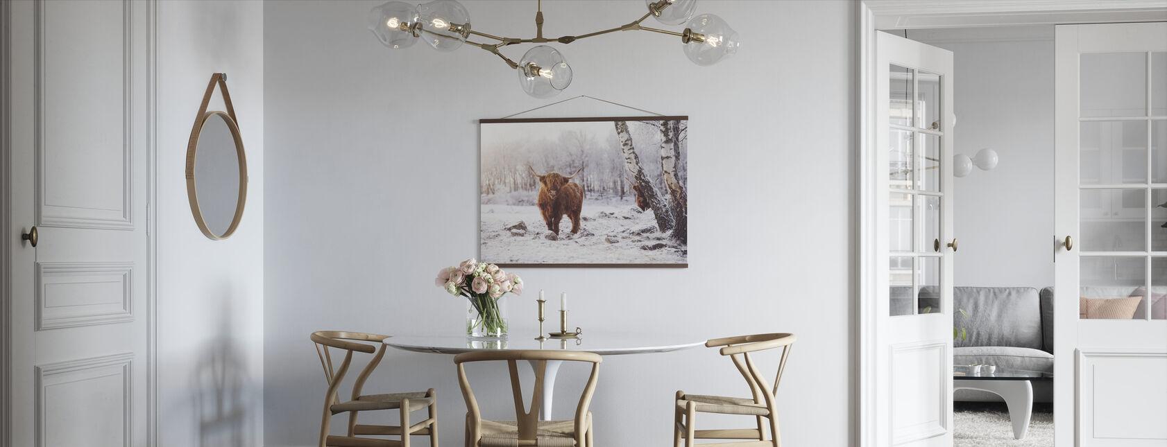 Highland Cattle - Poster - Kitchen