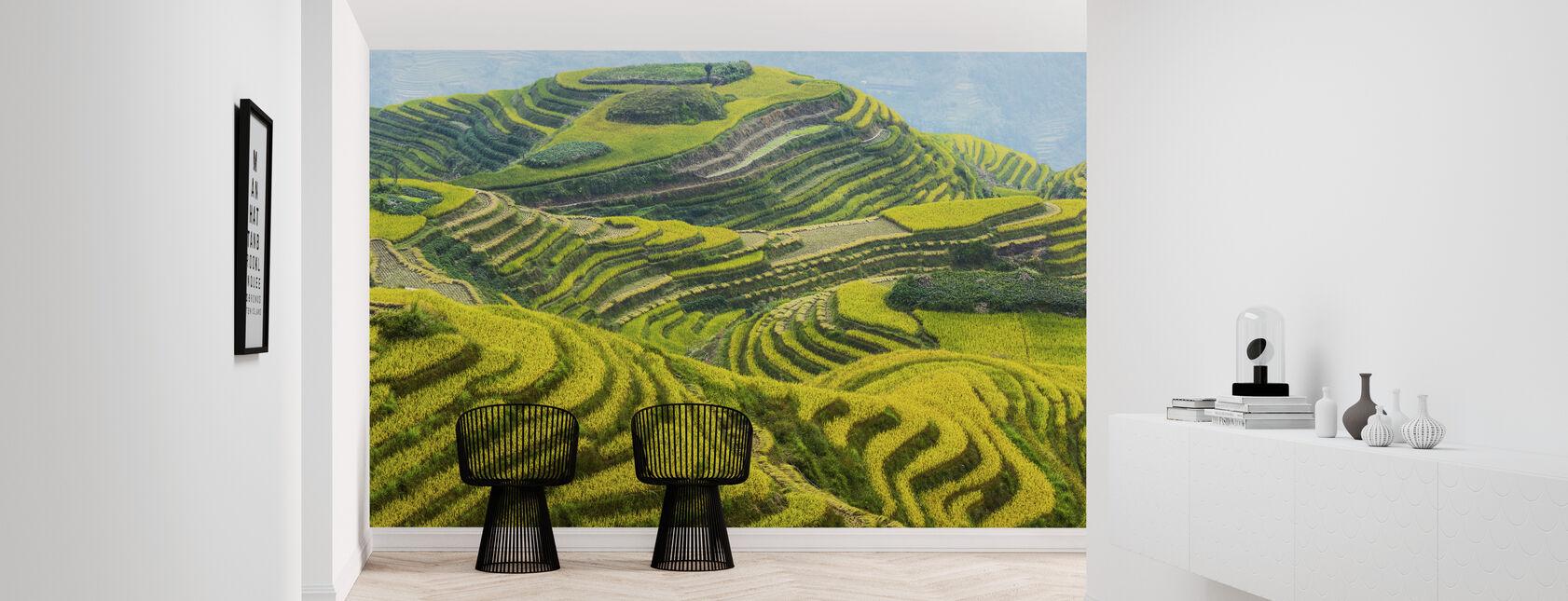 Guilin Fields - Wallpaper - Hallway