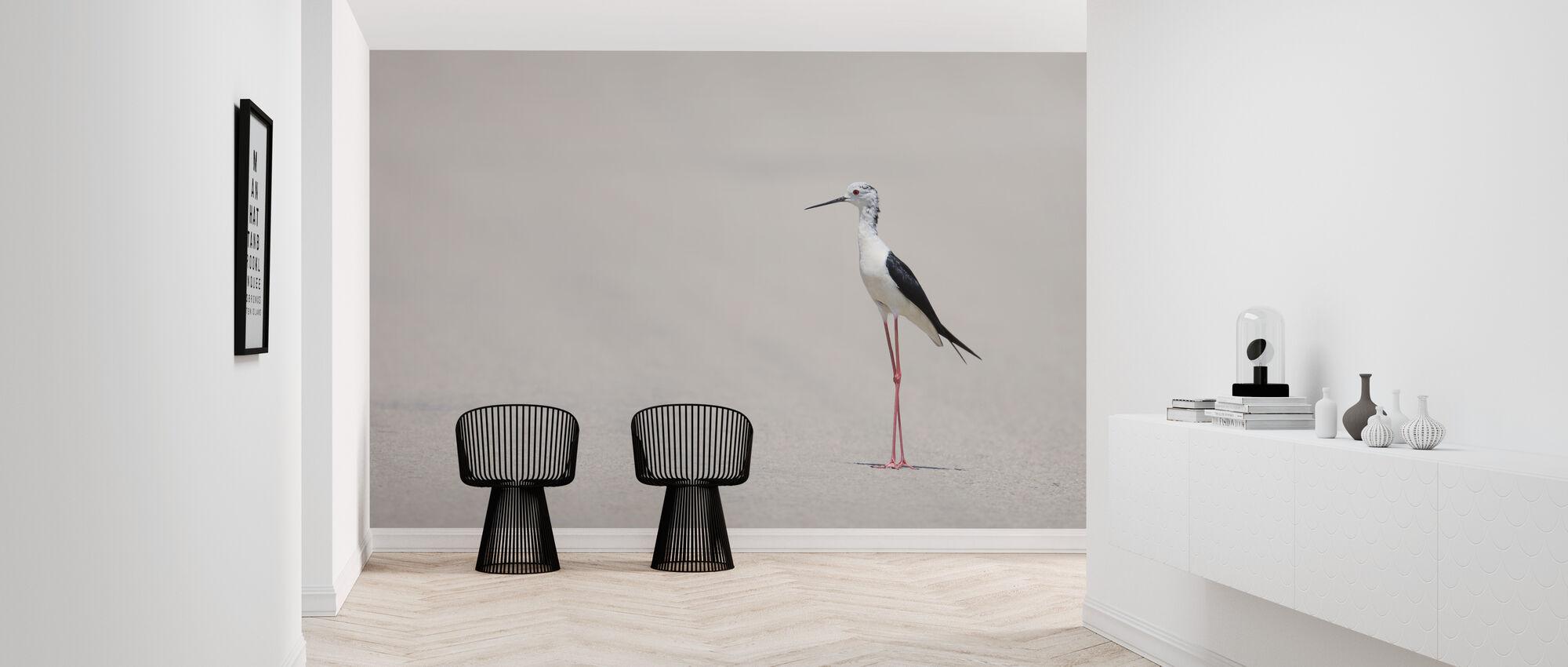 Bird at the Beach - Wallpaper - Hallway