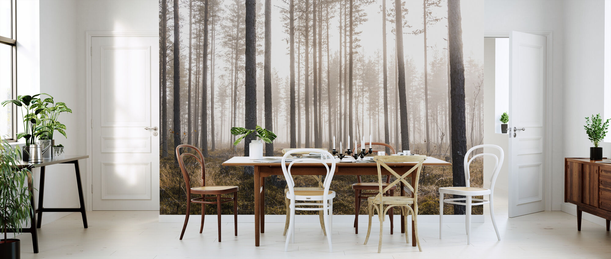 Whispering Trees - Wallpaper - Kitchen