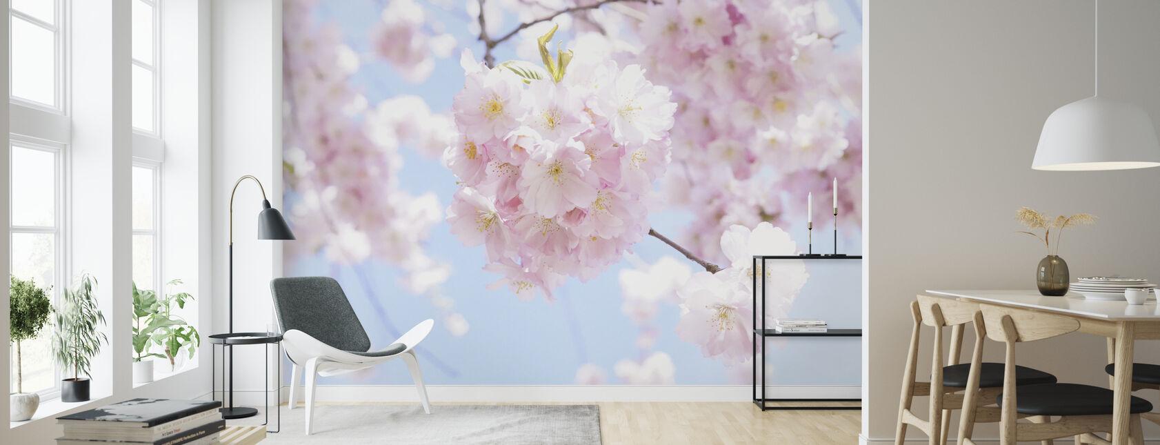Cherry Tree Flowers - Wallpaper - Living Room
