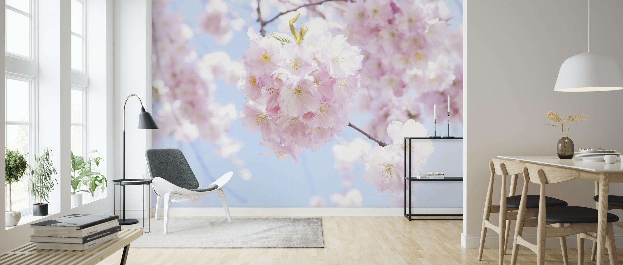 Kirsikkapuu Kukkia - Tapetti - Olohuone