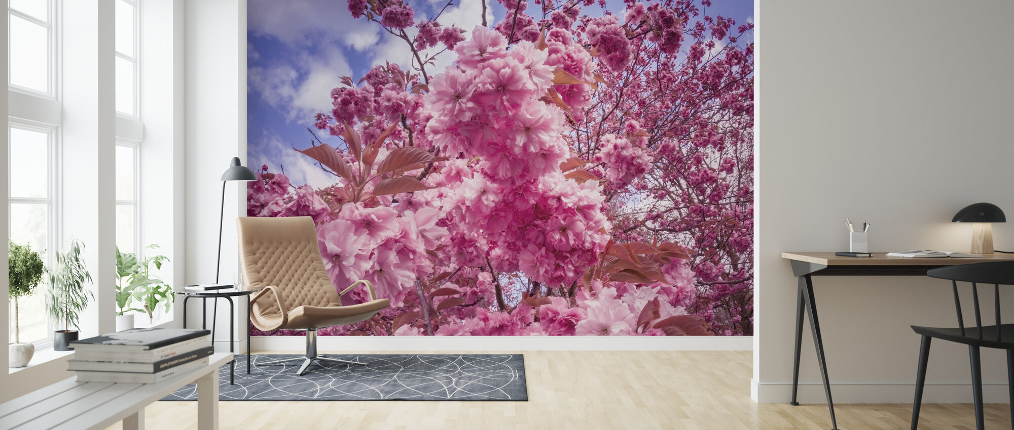 Japanese Cherry Trees - Wallpaper - Living Room
